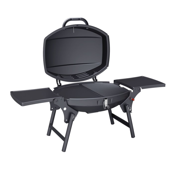 Portable Burner Gas Bbq Grill Includes Cover And Utensil Set